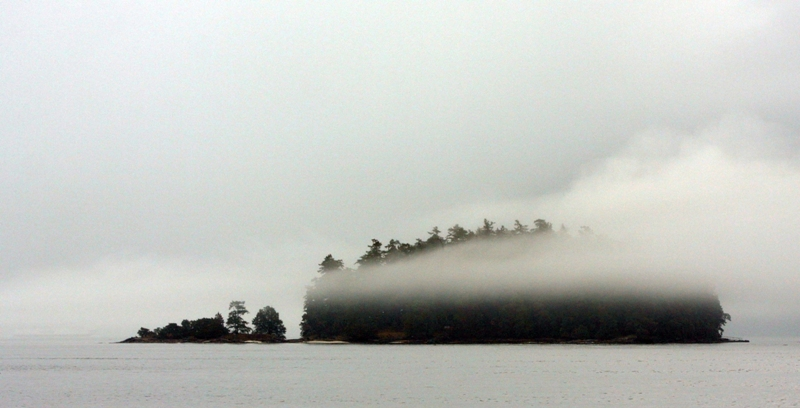 Overture in mist - the southern Gulf Islands in November (2/6)
