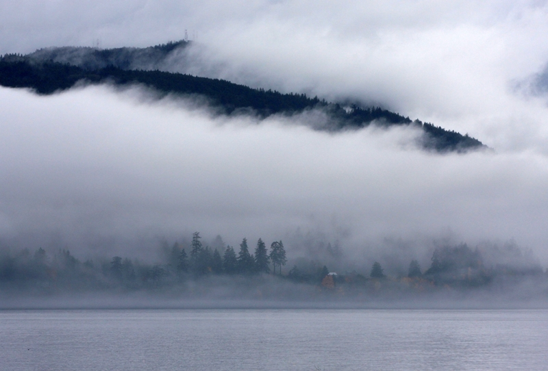 Overture in mist - the southern Gulf Islands in November (3/6)