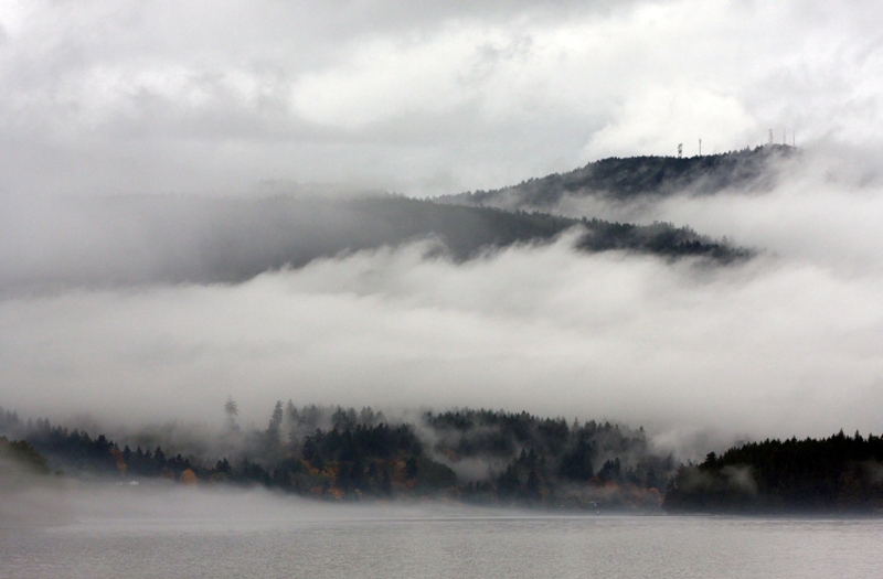 Overture in mist - the southern Gulf Islands in November (5/6)