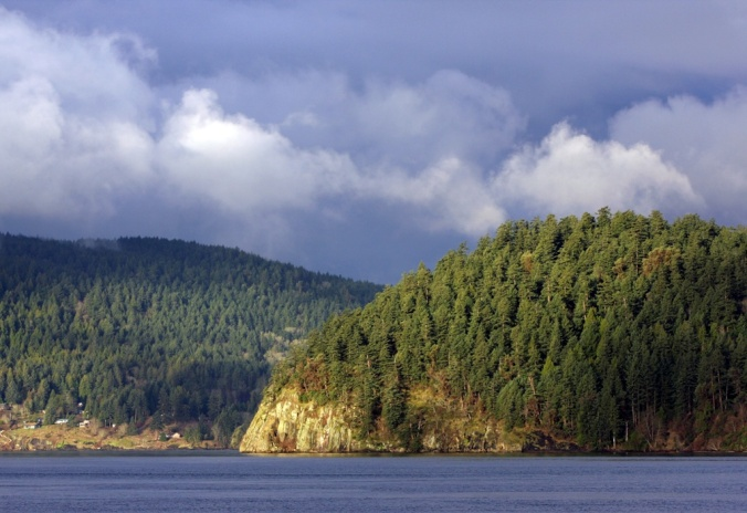 Good morning Galiano Island Dec 30 2012  by Terrill Welch 2012_12_30 299