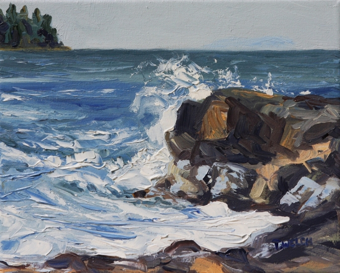 12 End of Storm Georgina Point Mayne Island 8 x 10 oil on canvas by Terrill Welch 2013_06_25 017