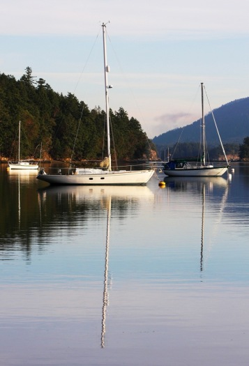 Horton Bay Mayne Island by Terrill Welch 2013_12_26 089
