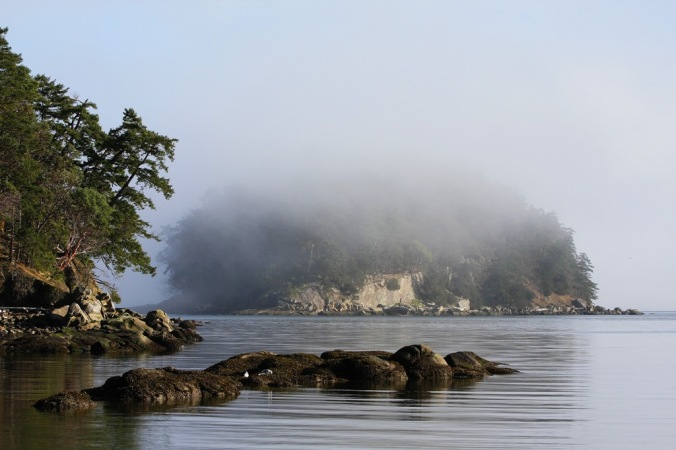 Bennett Bay Gulf Island National Park by Terrill Welch 2014_01_24 149
