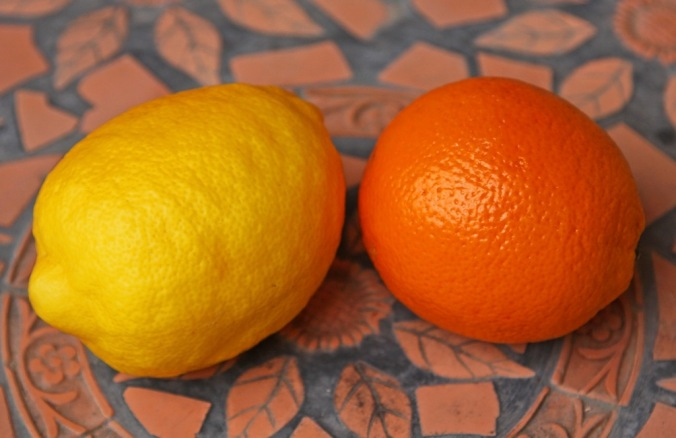 lemons larger than a large orange by Terrill Welch 2014_04_25 126