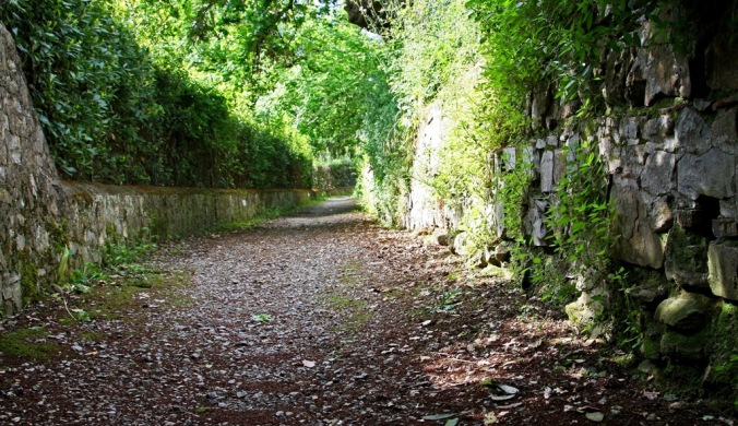 afternoon in  narrow lane of Florence countryside by Terrill Welch 2014_05_01 141
