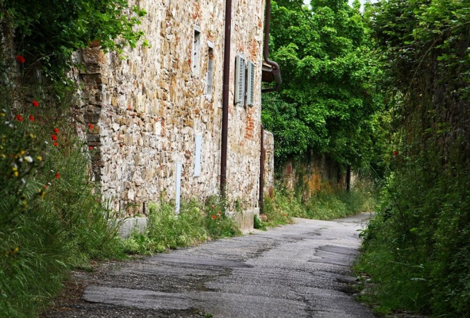 country lane in Florence Italy by Terrill Welch 2014_04_29 056