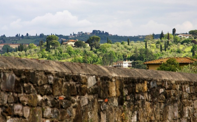 over the fence in Florence Italy  by Terrill Welch 2014_05_01 188