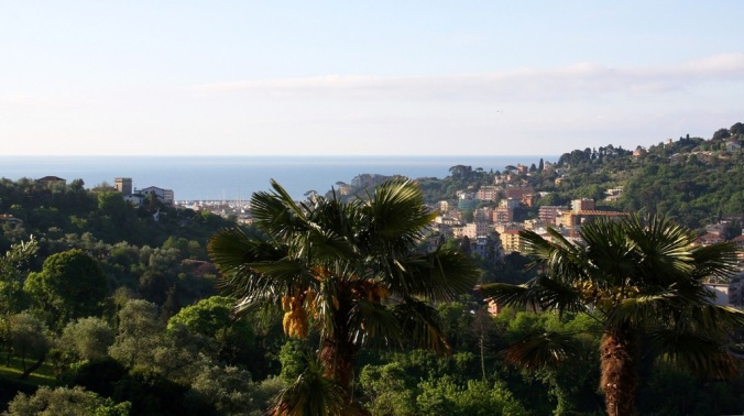 over the palm tree is Rapallo Italy by Terrill Welch 2014_05_08 039