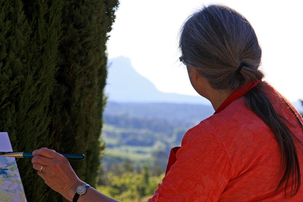 taking on Cezanne's Mountain by Mme Miceli Brigitte 2014_05_18 107