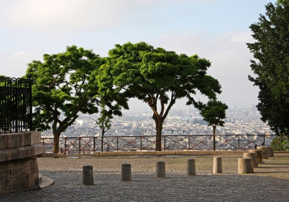 A Paris morning through the trees by Terrill Welch 2014_06_15 044