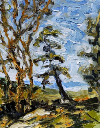 Mount Parke Trail study 10 x 8 inch oil on canvas by Terrill Welch 2014_09_19 006