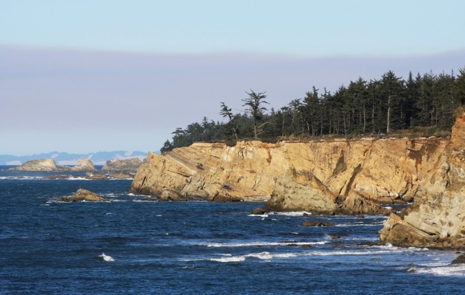 Cape Arago Oregon by Terrill Welch 2015_02_23 387