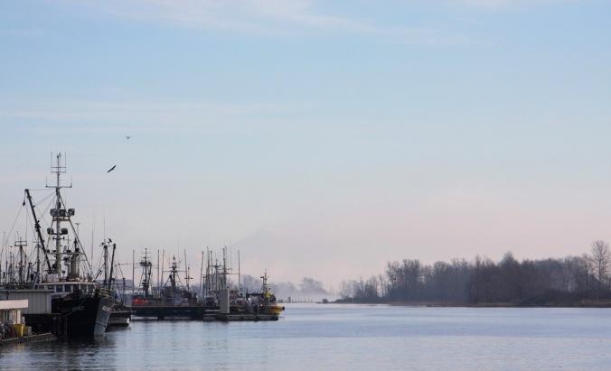 Morning Fog Lifting in Steveston B.C.  by Terrill Welch 2015_01_26 231