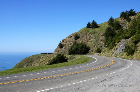 slowly winding along the California one by Terrill Welch 2015_03_04 127