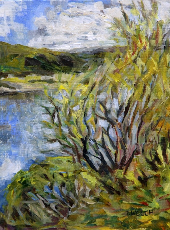 willows by the Quarry Lakes Fremont California 9 x 12 inch acrylic sketch on canvas board by Terrill Welch 2015_02_28 064
