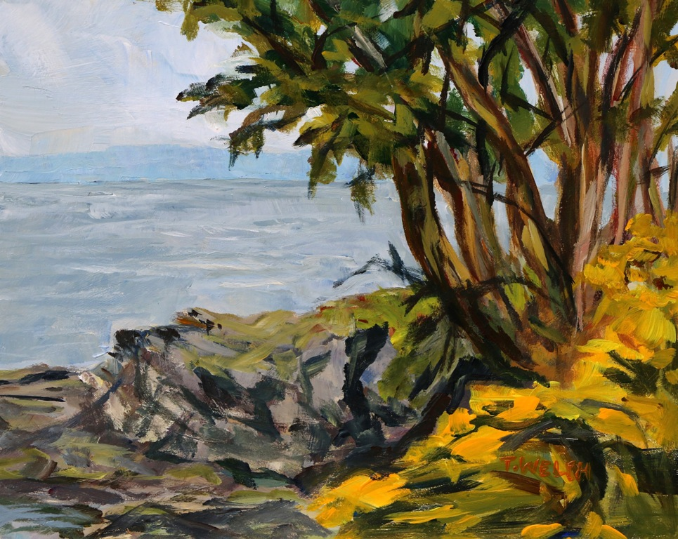 Scotch Broom and Arbutus Tree set in grey quick study 8 x 10 inch acrylic plein air sketch on gessobord by Terrill Welch 2015_05_11 016