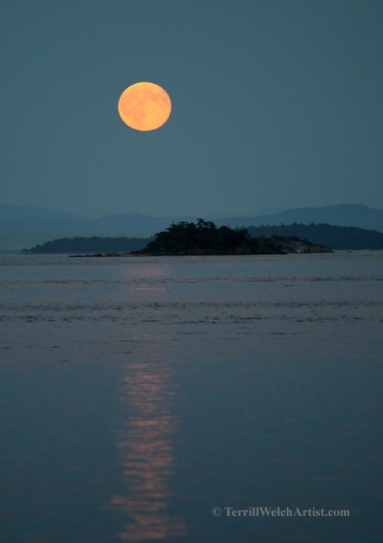 Blue Moon Reflections Mayne Island July 2015 by Terrill Welch 2015_07_31 216