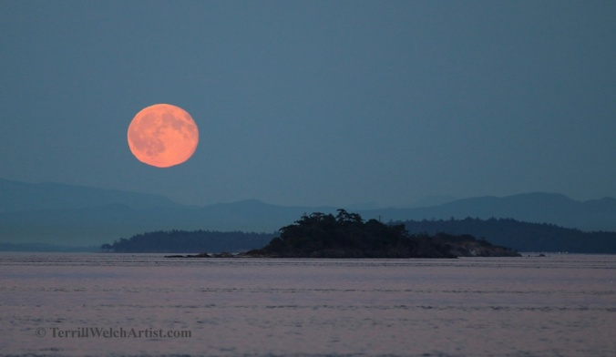 Mayne Island Blue Moon rise July 31 2015 by Terrill Welch 2015_07_31 170