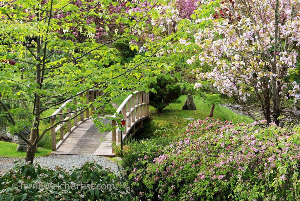 Bridge Mayne Island Japanese Garden by Terrill Welch IMG_2224