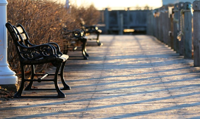 Frost on boardwalk Confederation Landing by Terrill Welch IMG_3023