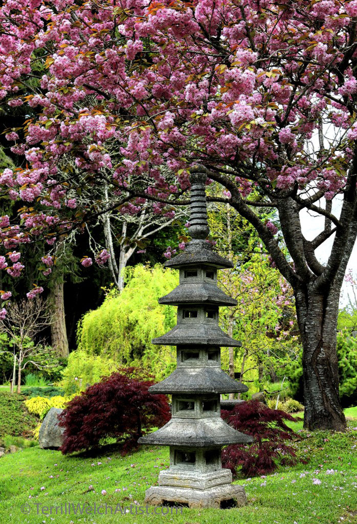 ink outline standing together in Japanese Garden by Terrill Welch IMG_2298