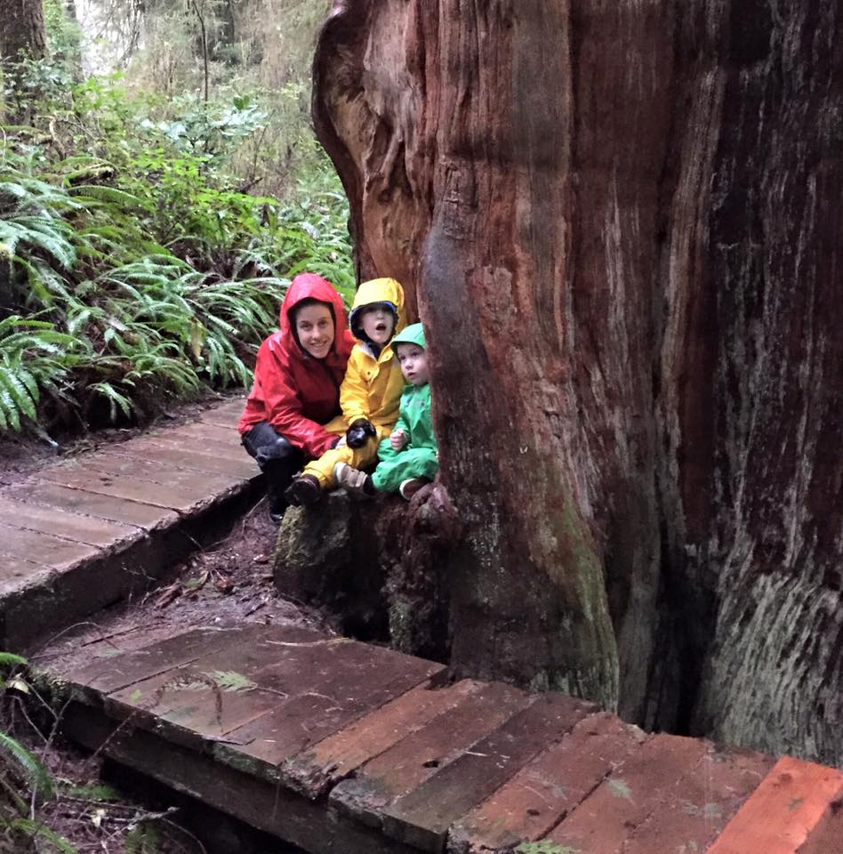 Rainy day forest walk with Josie and O boys iPhone capture by Terrill Welch