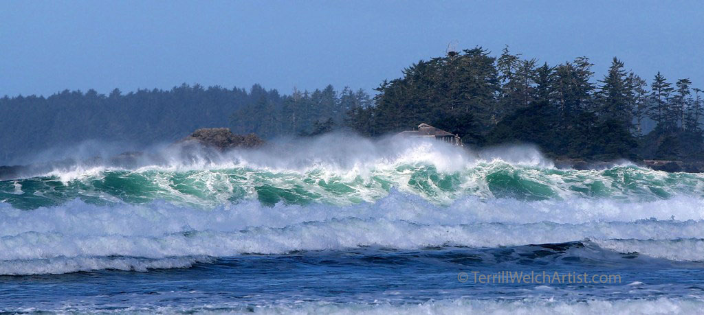 Sun and Sea dance Frank Island Tofino British Columbia by Terrill Welch IMG_1751