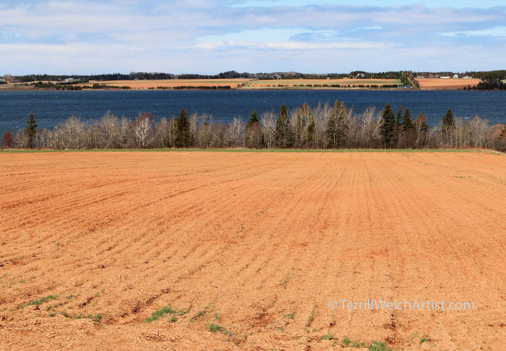 fields of red St Peters Bay PEI by Terrill Welch May 9 2016 IMG_3646