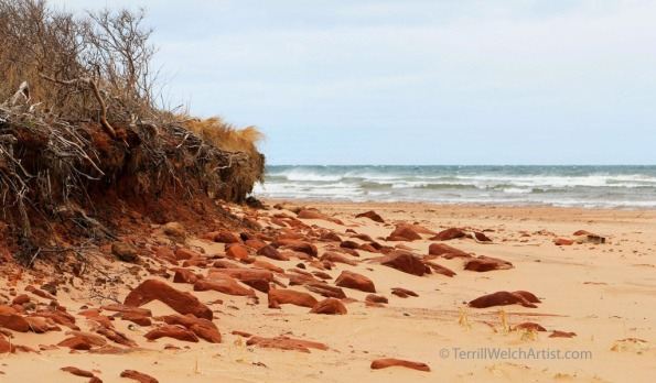 shores to sea Savage Harbour PEI by Terrill Welch May 9 2016 IMG_3577