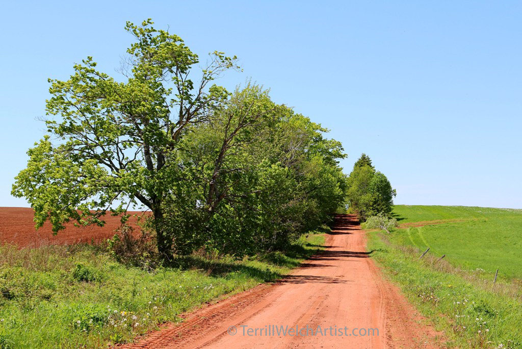 Farrar Rd PEI by Terrill Welch IMG_5397