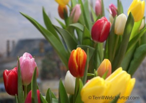 bunches-of-tulips-by-terrill-welch-img_8864