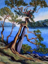 southern-gulf-islands-afternoon-48-x-36-inch-oil-on-canvas-by-terrill-welch-2016-02-05-img_8448