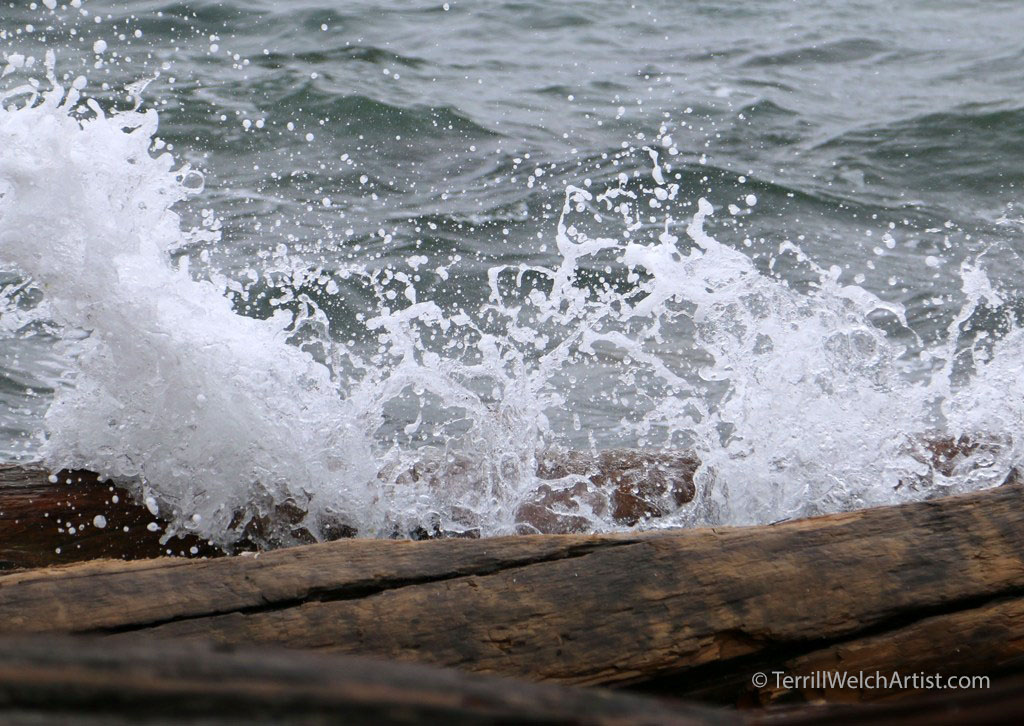 high-winter-tide-by-terrill-welch-img_9678
