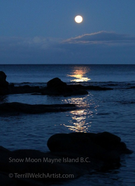 snow-moon-rising-in-reef-bay-mayne-island-bc-by-terrill-welch-img_0133