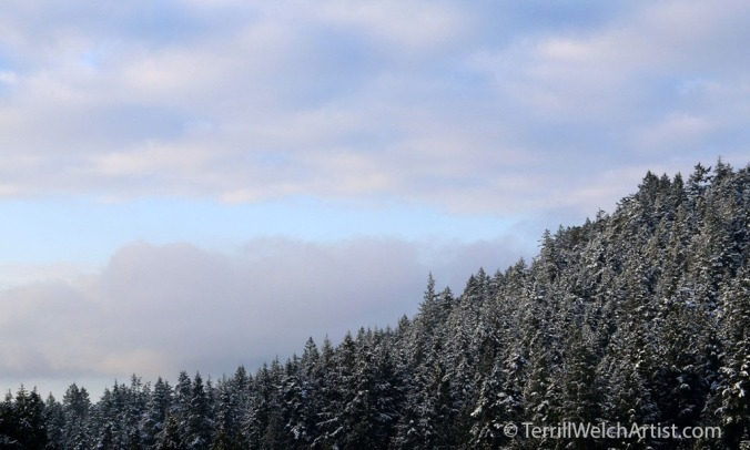 winter-morning-sky-mayne-island-bc-img_1803