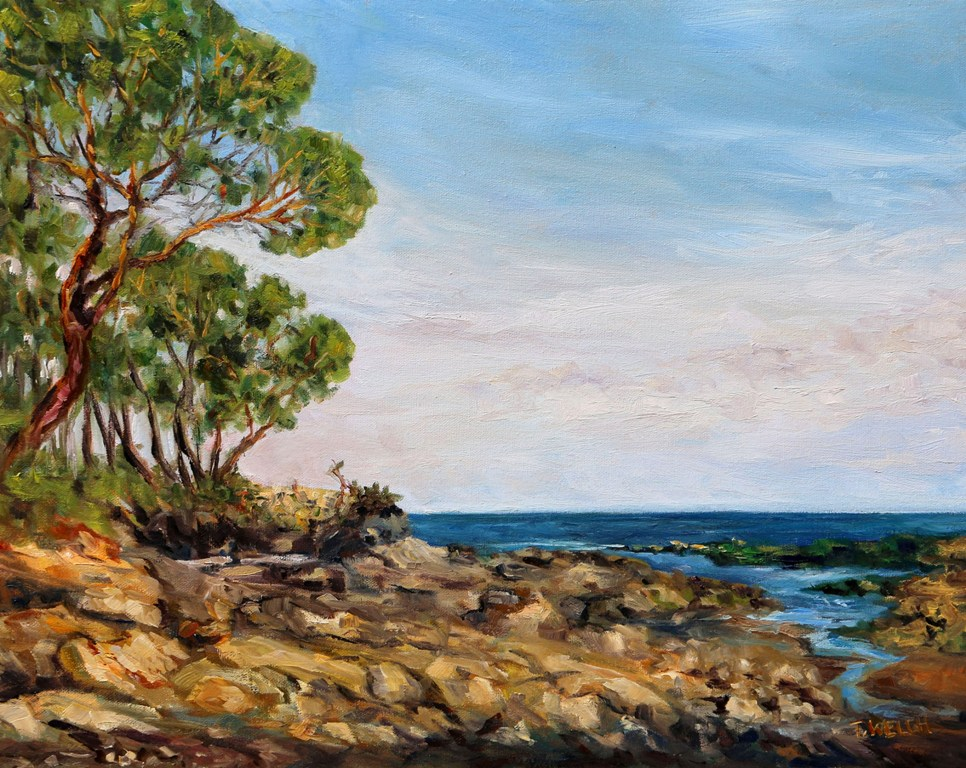 Summer Lowtide Morning 16 x 20 inch oil on canvas plein air by Terrill Welch Aug 17 2017 IMG_0461