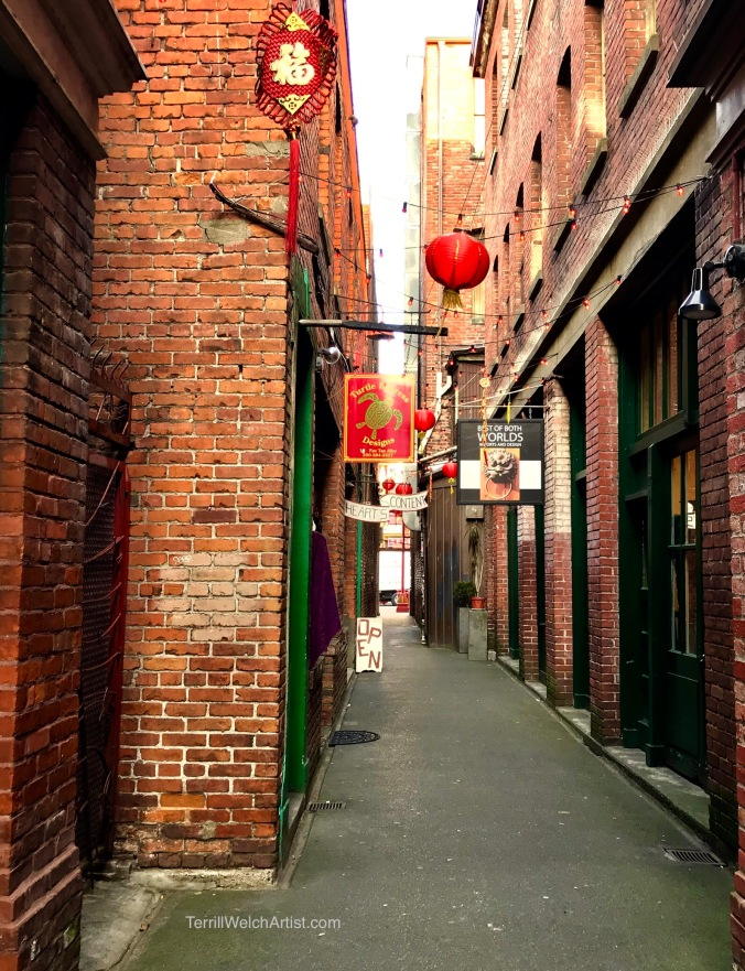Fan-Tan-Alley-Victoria-BC-by-Terrill-Welch