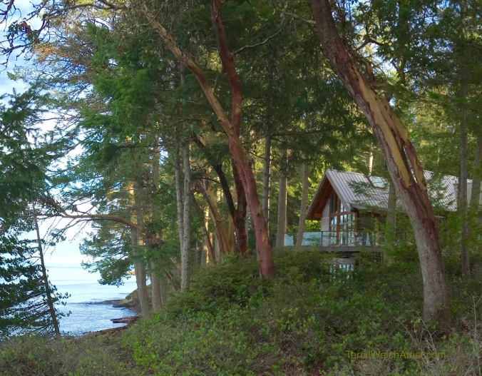 House In the trees beside the sea by Terrill Welch
